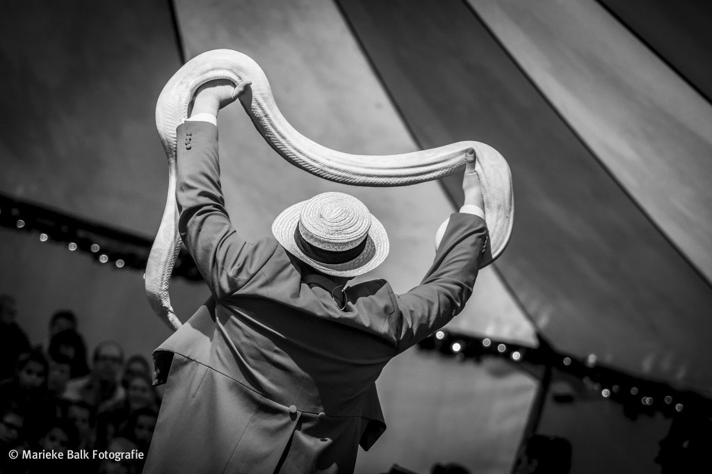 Circus Salto_sander-2
